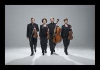 Assasello Quartett Foto ÔêÅ Hermann und ClN╠ârchen Baus.jpg