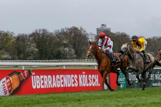 Online_Grand Prix Aufgalopp 2021_FRÜH Kölsch@ Sabine Effgen.jpg