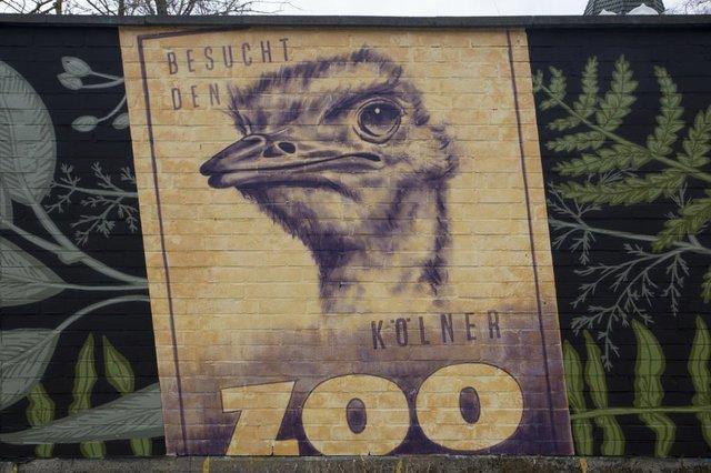 ki05_2021_story_citymarketing_koelner_zoo_c_kubig_org.jpg