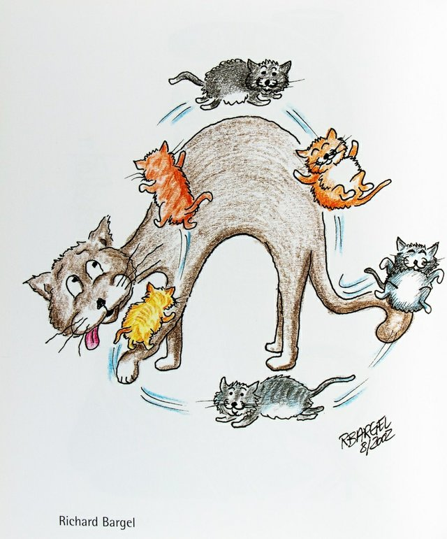 Cats_are_Cool_Zeichnung_Richard_Bargel_c_Richard_Bargel.jpg